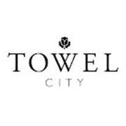 Ingrosso Towel City